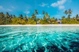 Perfect beach view. Summer holiday and vacation design. Inspirational tropical beach, palm trees and white sand.