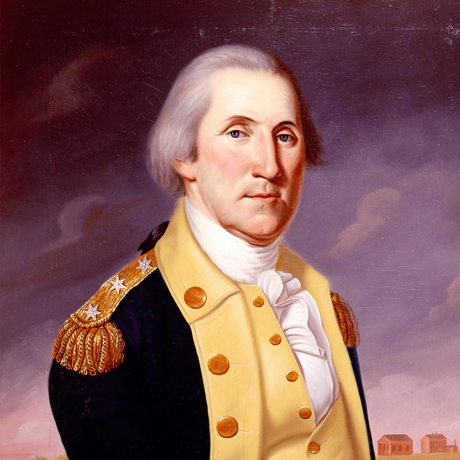 the military career of george washington essay Portrait of george washington in military uniform, painted by rembrandt peale one of washington's most important contributions as commander-in-chief was to establish the precedent that civilian-elected officials, rather than military officers, possessed ultimate authority over the military.