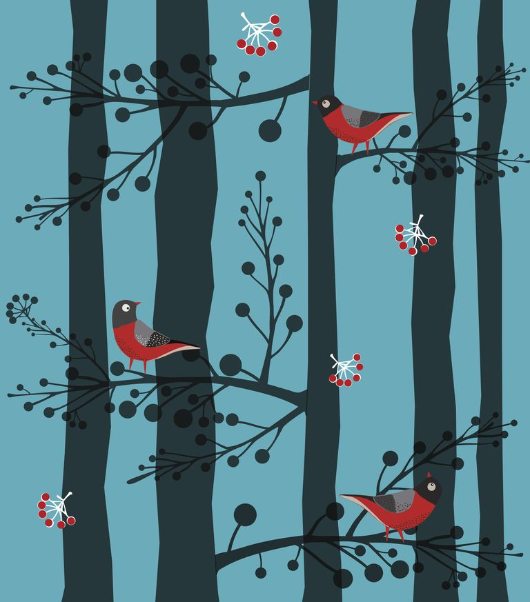 illustration of birds in trees