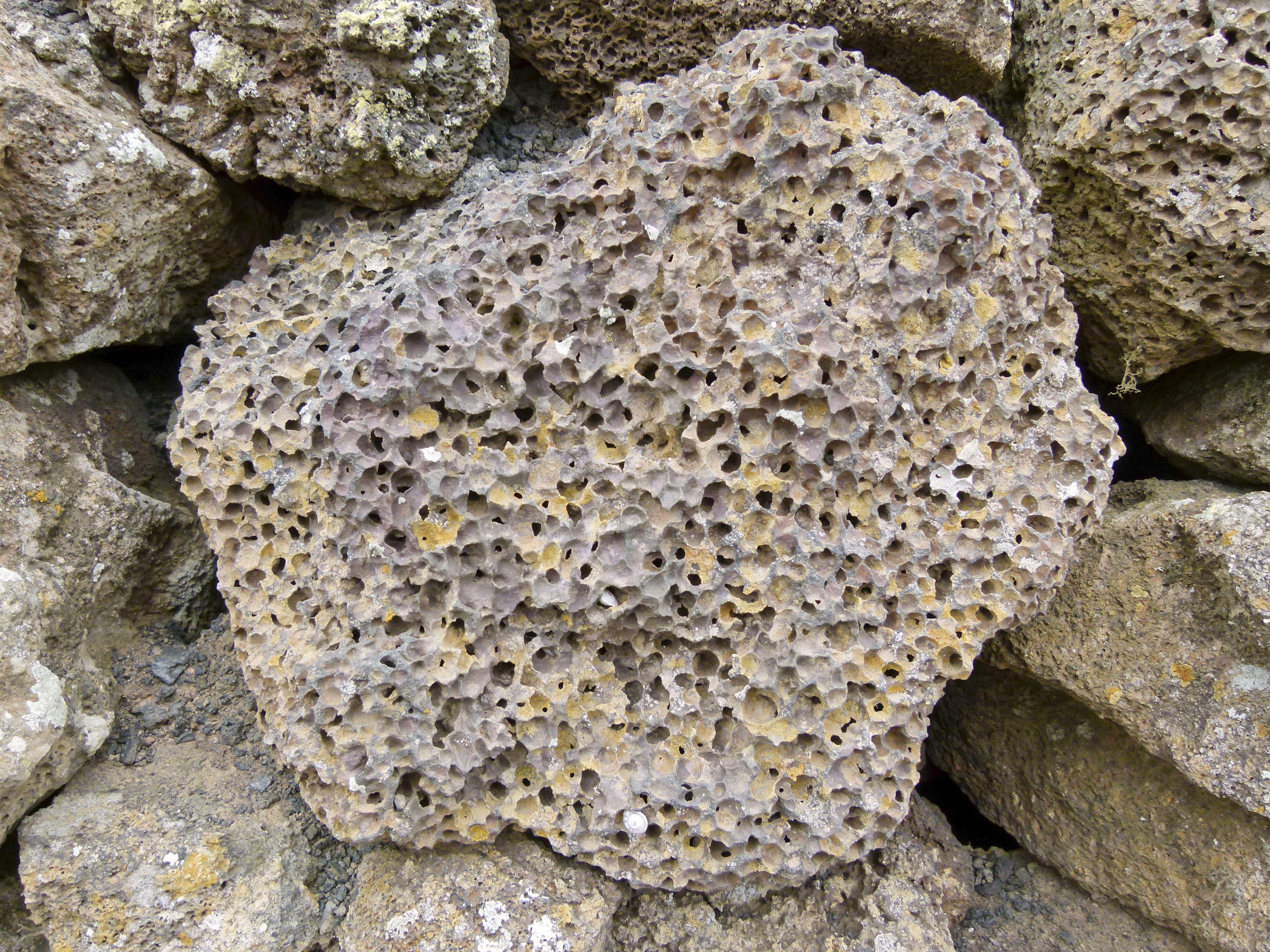 Large pumice stone among other rocks.