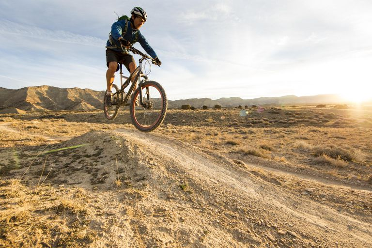 Which Mountain Bike Wheel Size Is Right For You