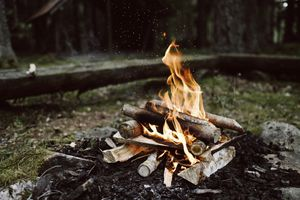 Bonfire in the woods