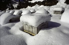 Honey bee hives in the snow.