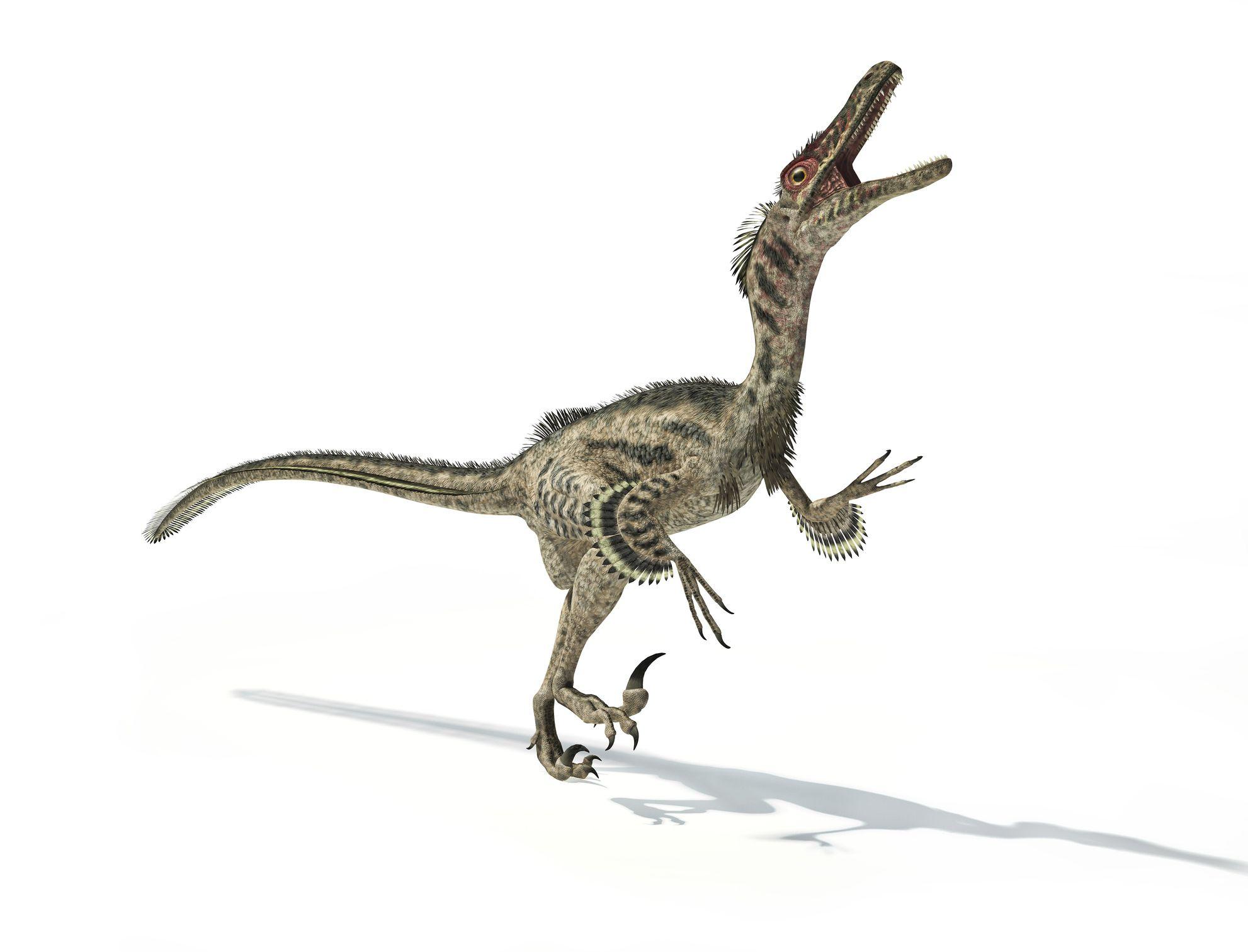Asian dinosaur
