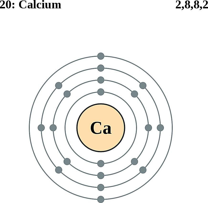 This diagram of a calcium atom shows the electron shell.