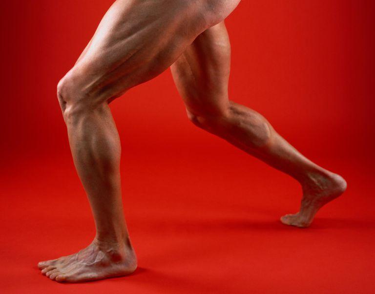 Man's Muscular Legs