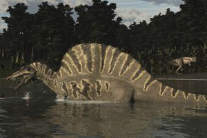 Spinosaurus hunting for fish in a lake.