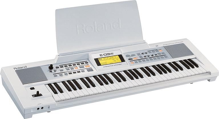 Roland E-09 white or black