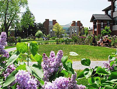 St. Lawrence University - Lilac Garden
