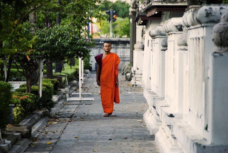 Theravada Buddhist Monk
