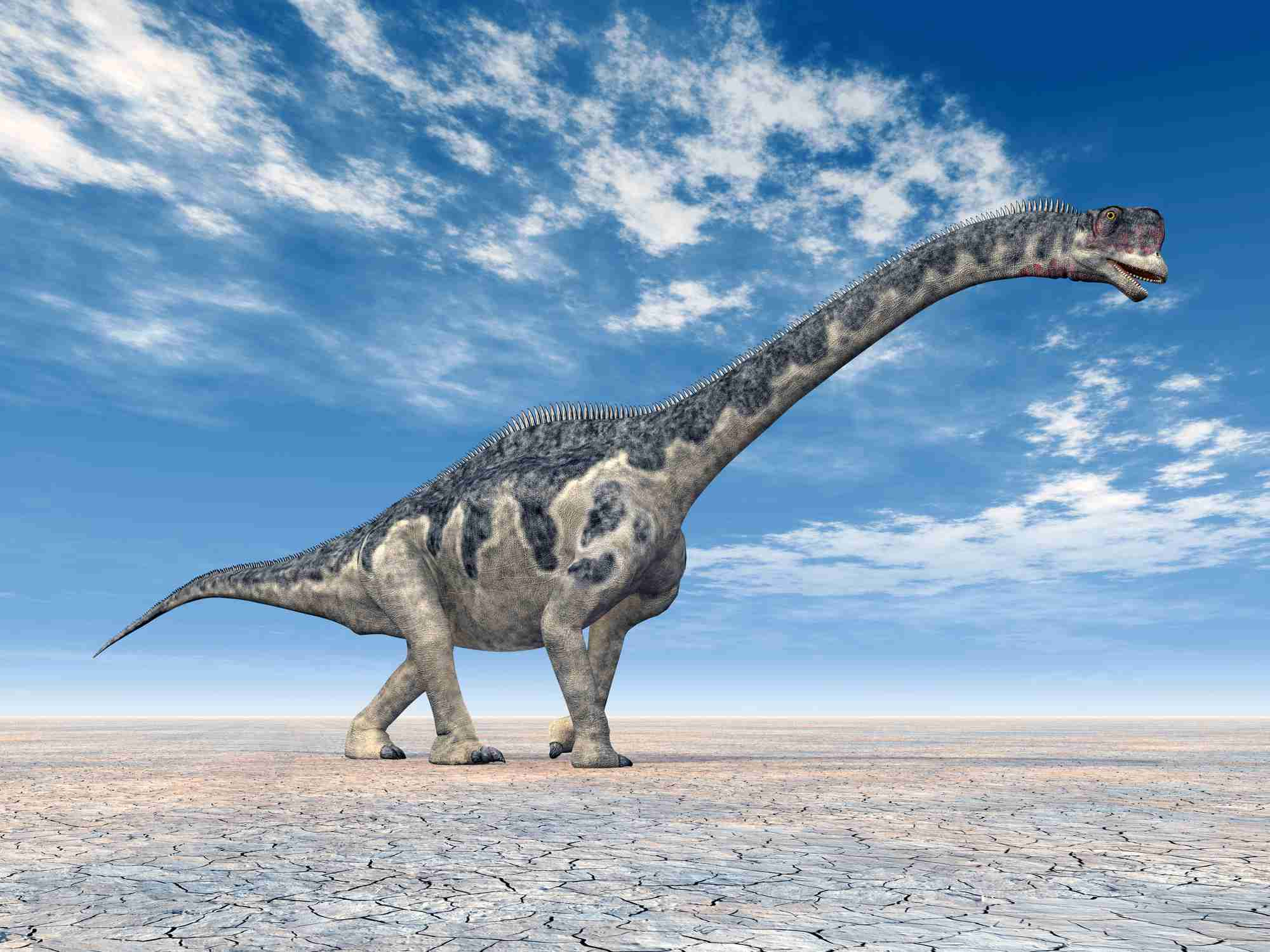 Dinosaur Europasaurus