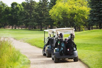 Golf Cart Etiquette and Rules of the Road Golf Cart Woody Green on 2002 chrysler gem cart, car cart, box cart,