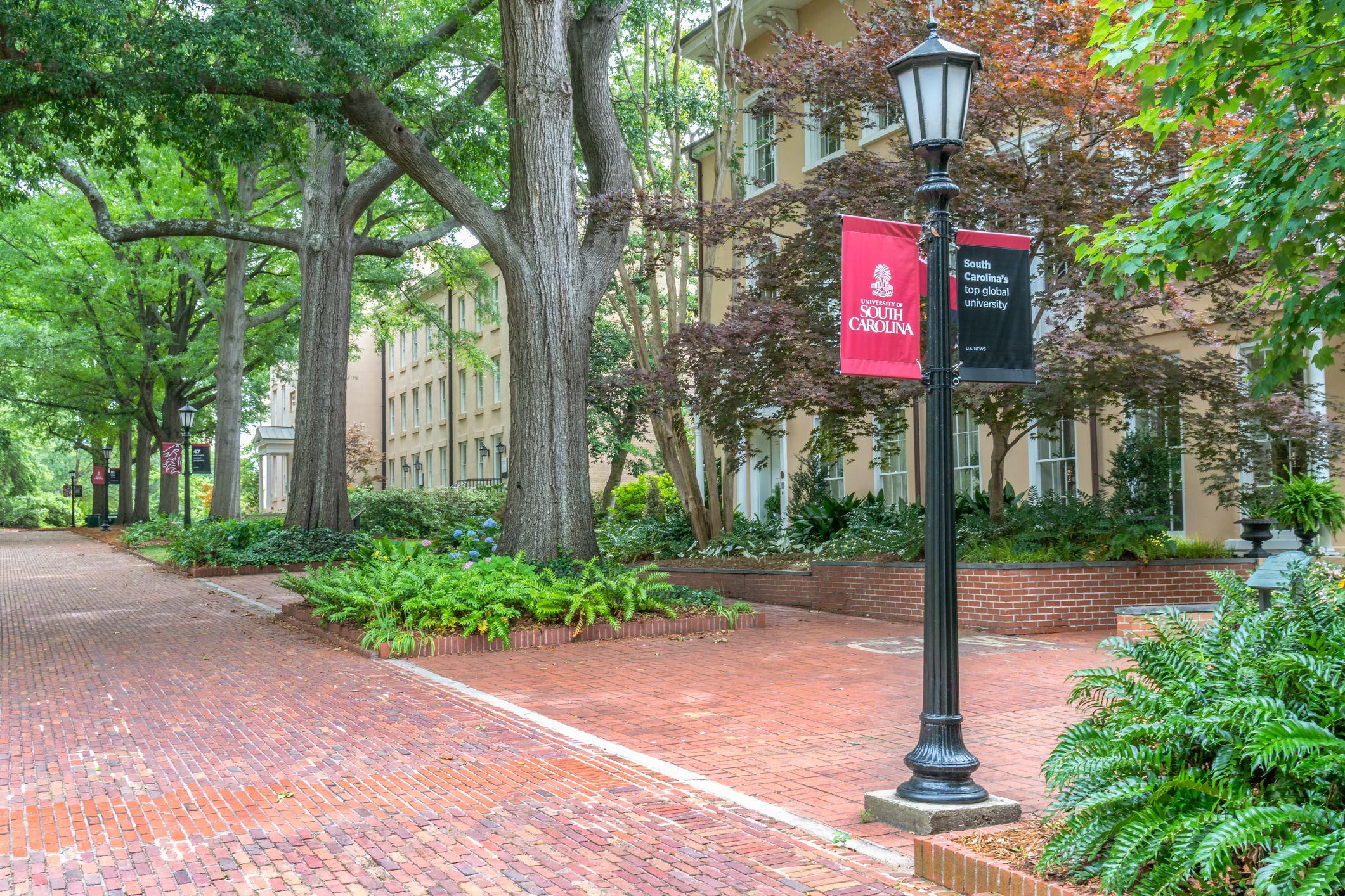 University of south carolina application essay