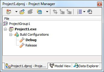Delphi Project Manager