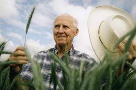 Dr. Norman Burlaug in a field of wheat.