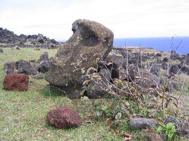 Moai Head in Rubble, Easter Island