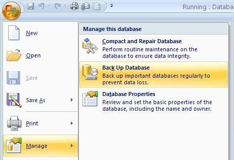 A screenshot of Microsoft Access