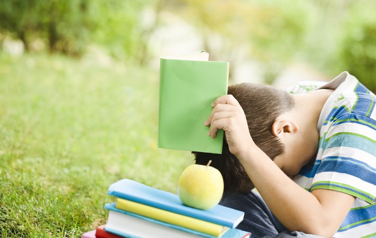 Teaching reading comprehension to dyslexic students ibookread Read Online