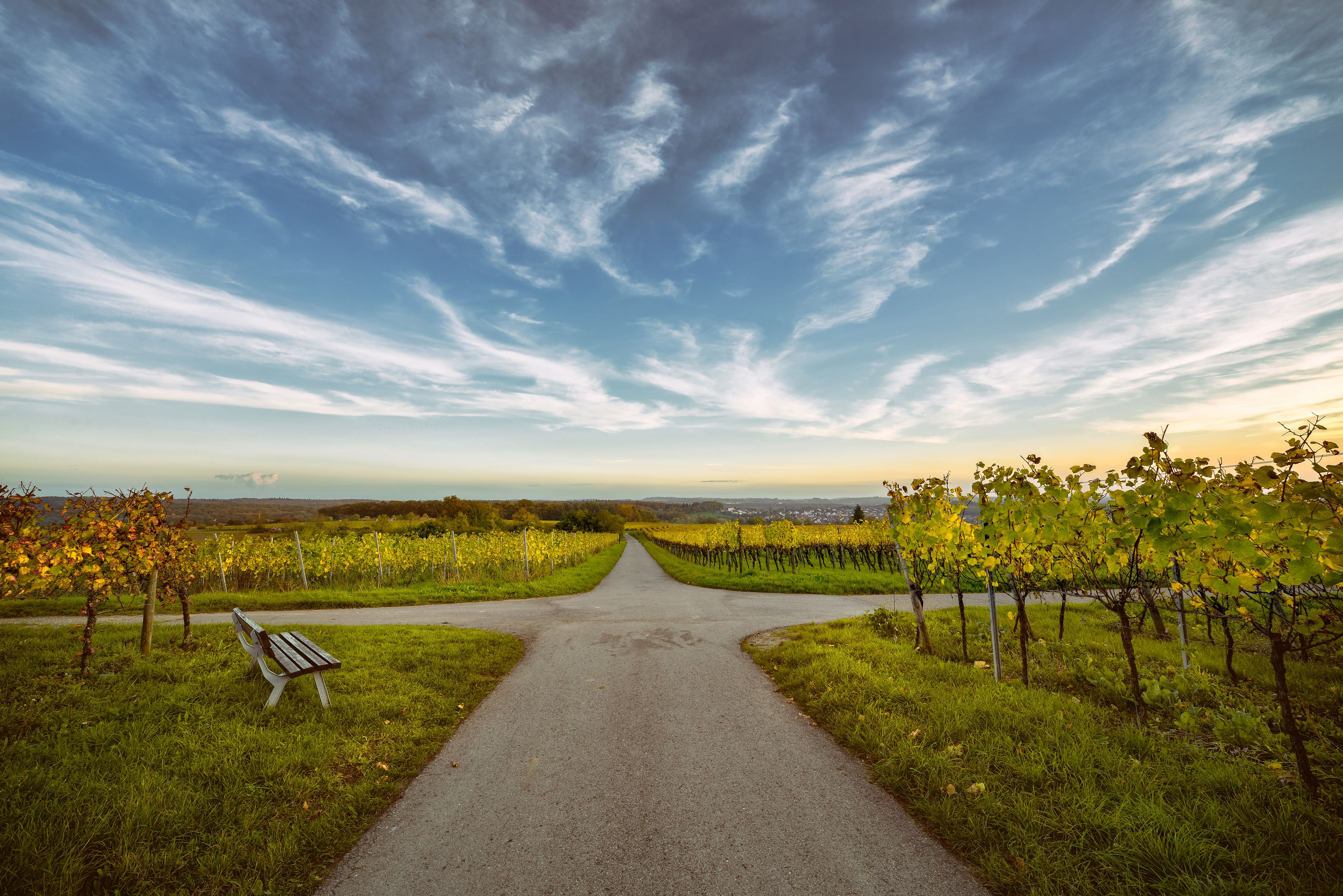 A crossroads