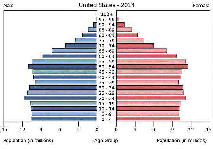 expansive population pyramid