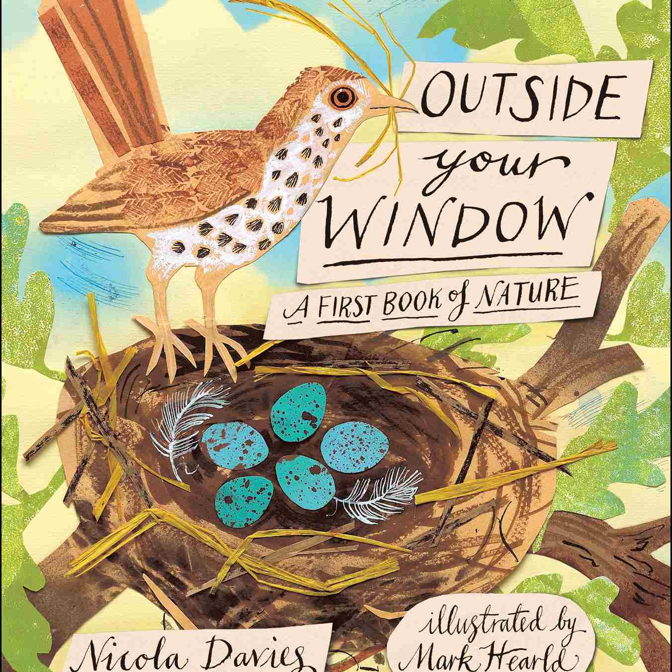 Outside Your Window A First Book of Nature book cover
