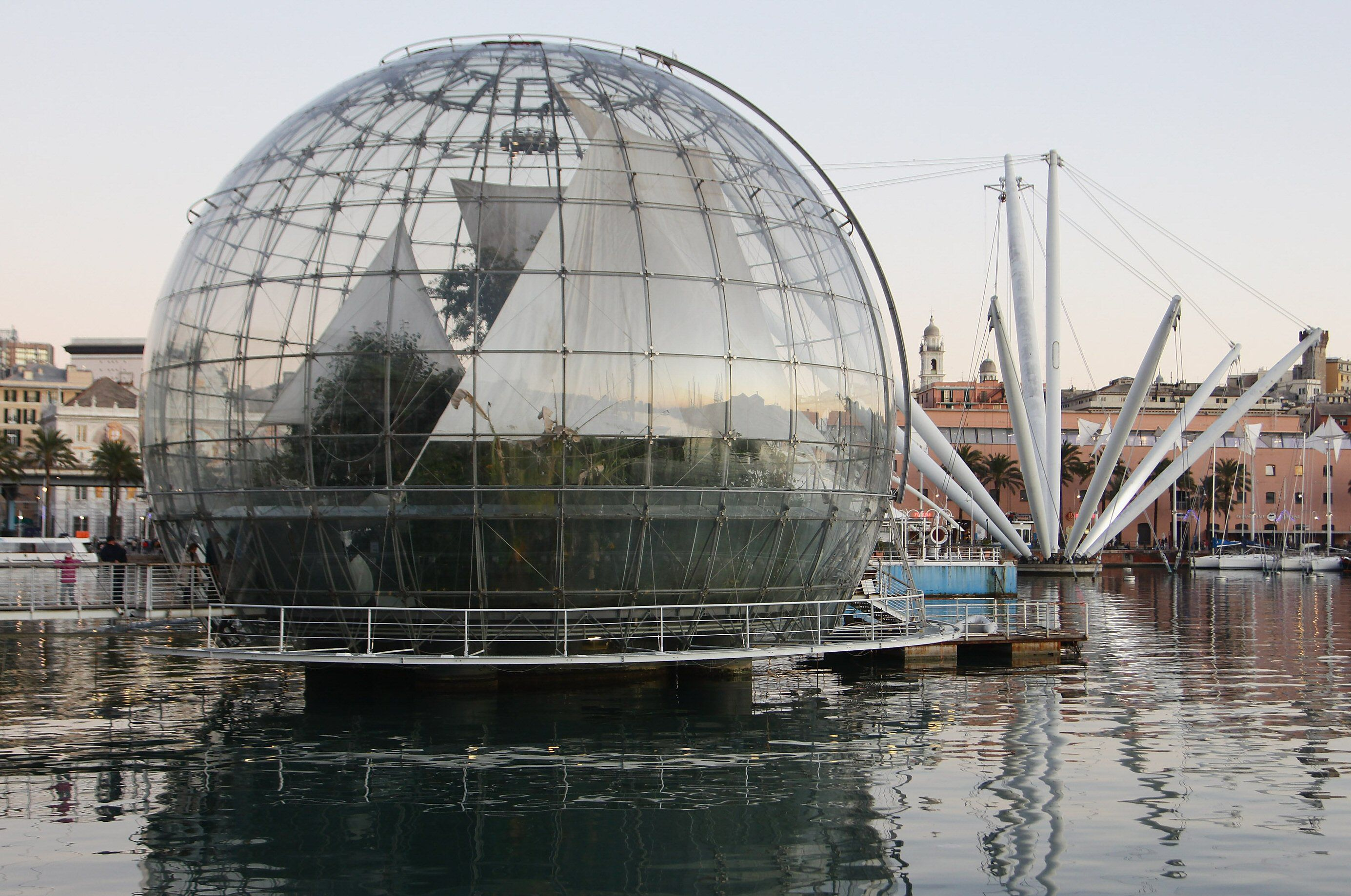 biosphere next to spidery structure of long white poles near water