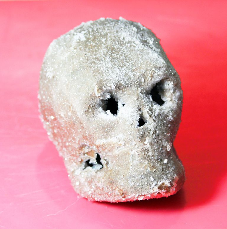 This cardboard skull sparkles with borax crystals.