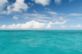 The Caribbean gets its famous color from dissolved limestone and low levels of algae and plant matter in the water.