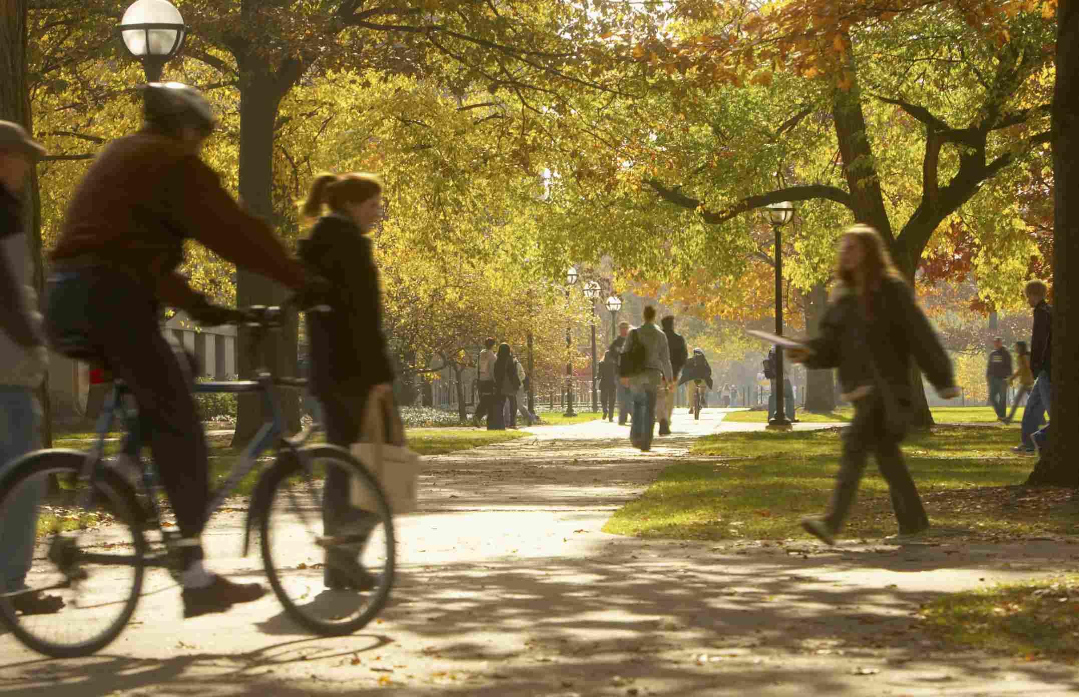 La universidad de Michigan en Ann Arbor ofrece excelentes programas a precio razonable.