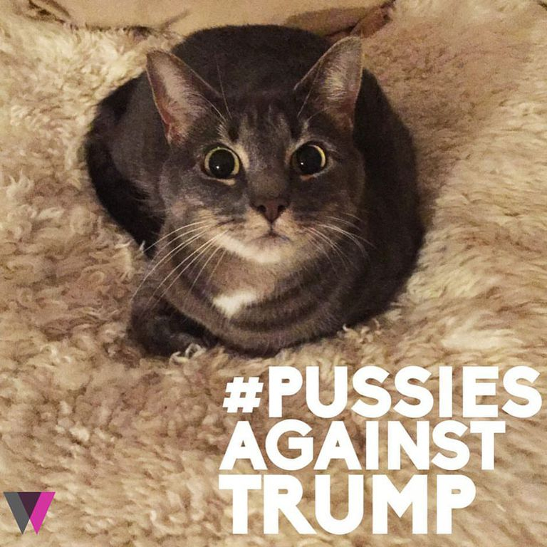 Funniest Memes Reacting To Trump Groping Scandal