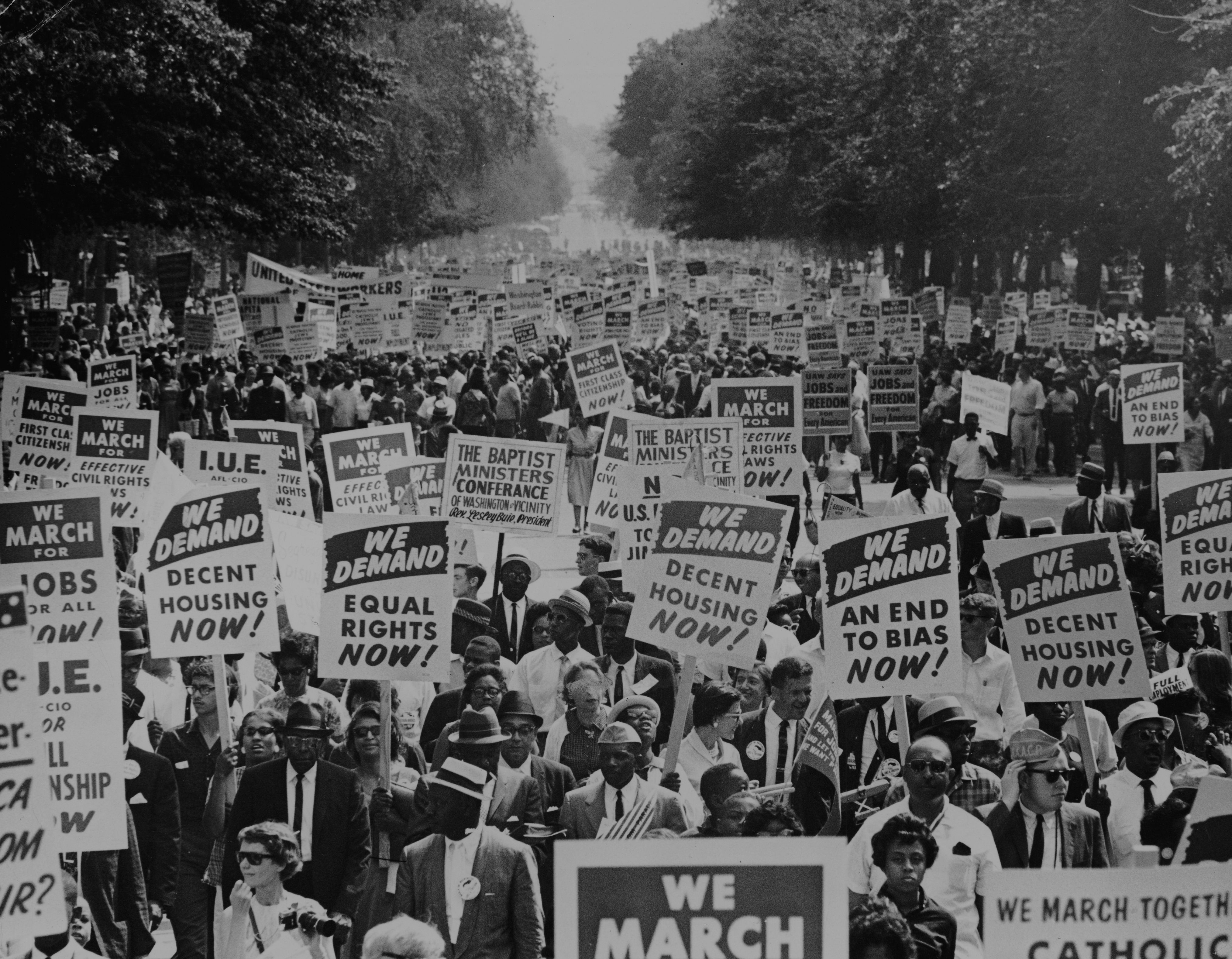 The Black Struggle for Freedom