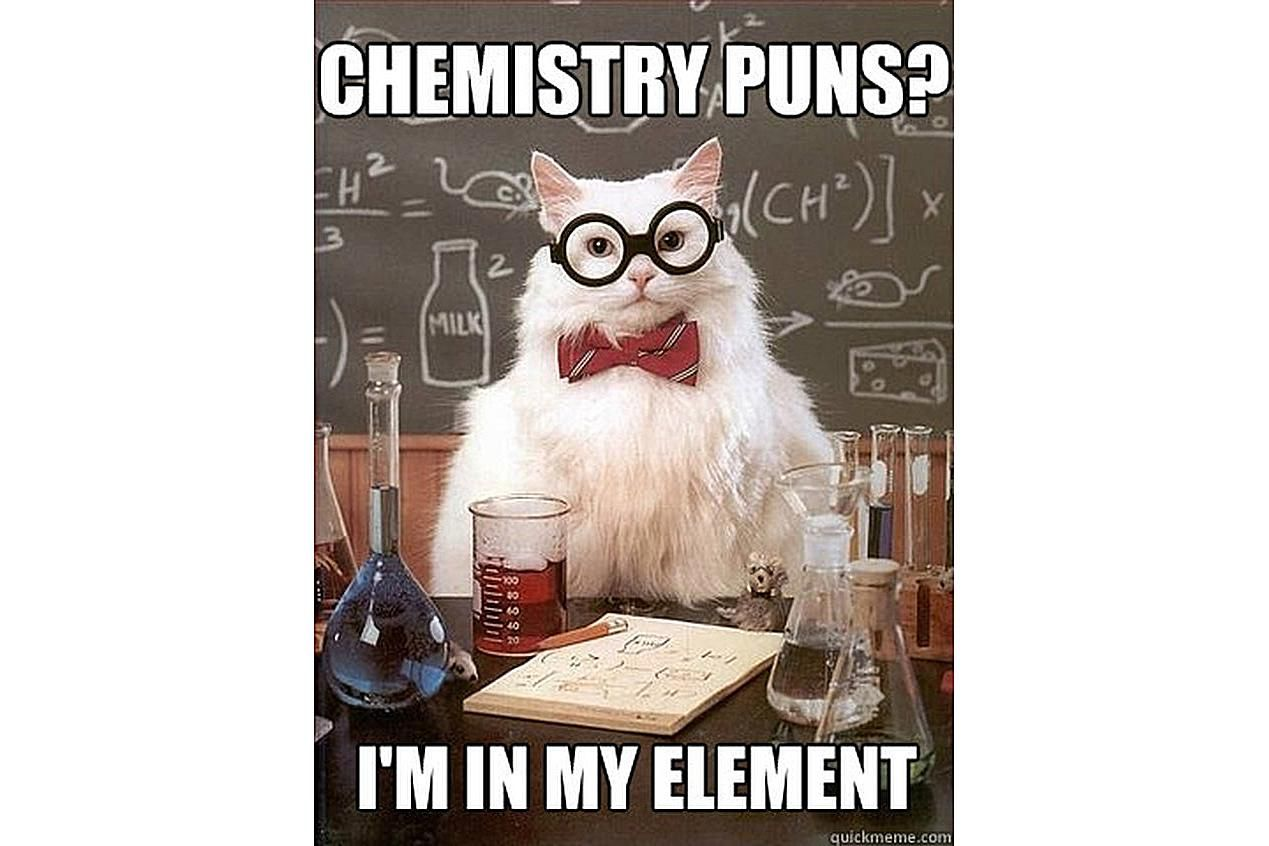 Best Of Chemistry Cat Science Meme