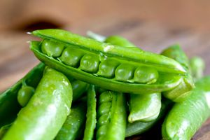 Fresh English peas with the gene for a smooth, round seed shape