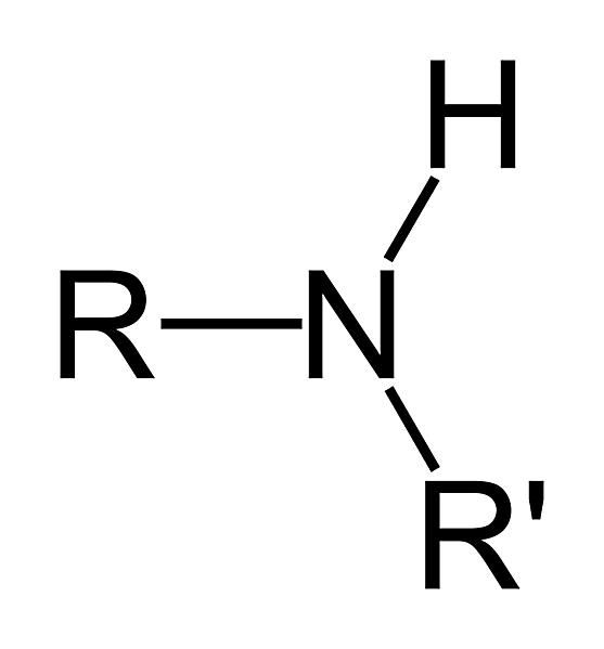 A secondary amine group is a type of amine.