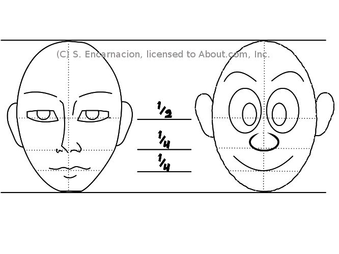 Face proportions of a cartoon character