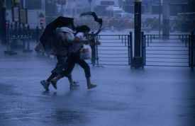 Typhoon force 8 hits pedestrians in the street