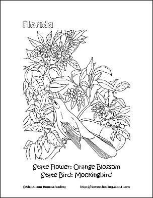 Print The Pdf Coloring Page Students Can Color Floridas State Flower