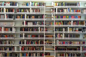 A ladder against tall library bookshelves