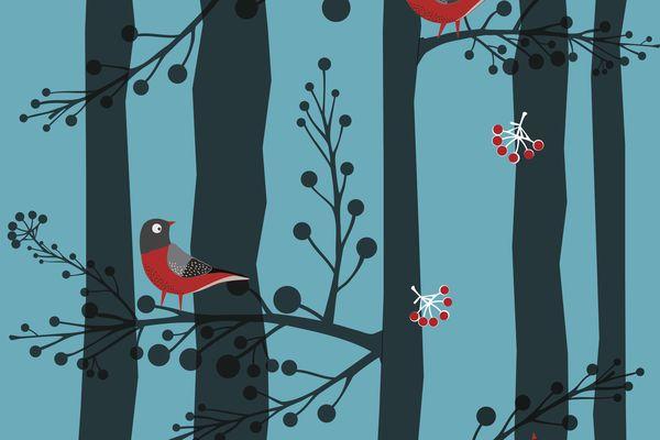 illustration of birds in trees