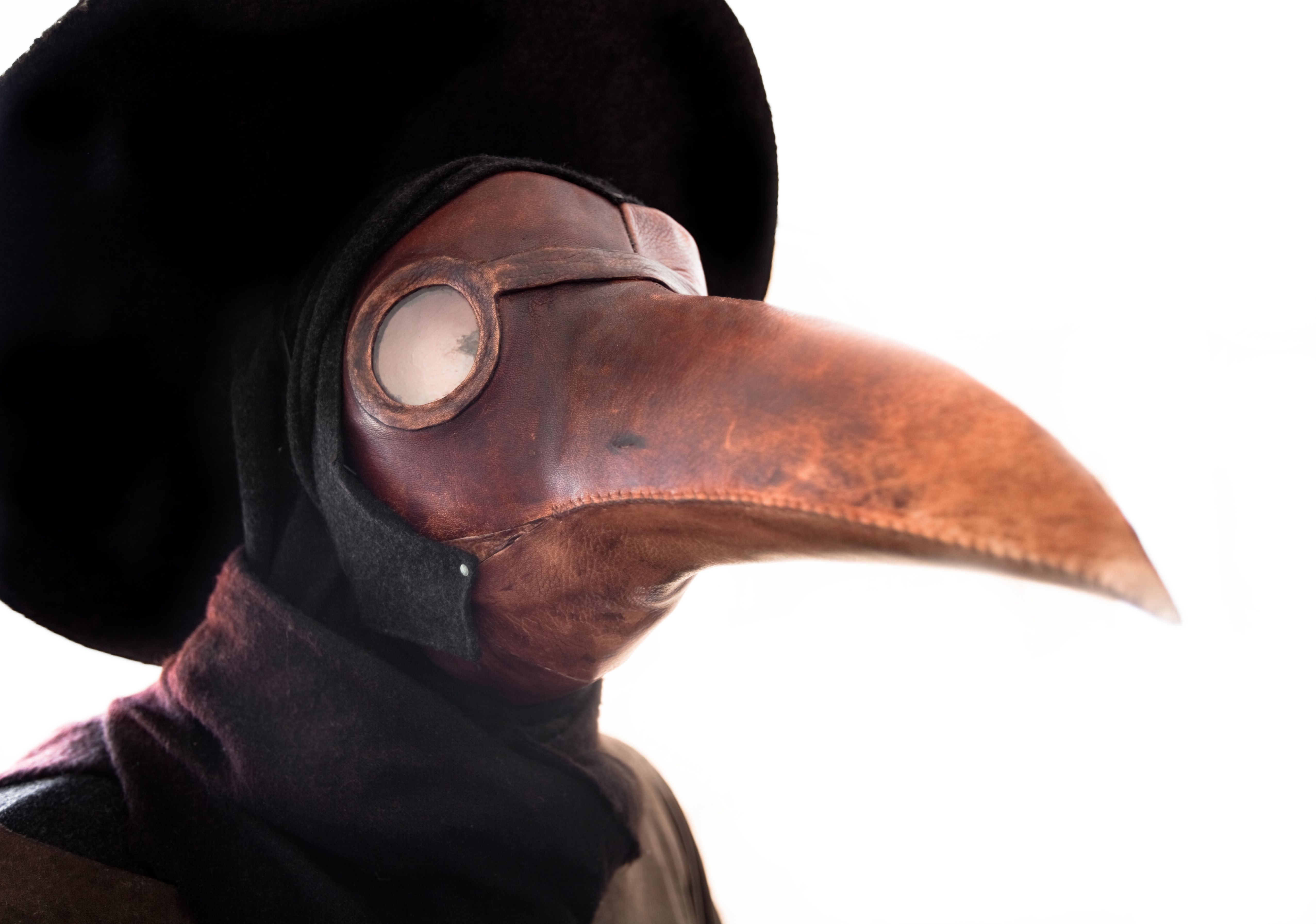 The Arrival and Spread of the Black Plague in Europe