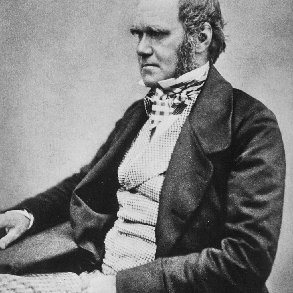 Charles Darwin photograph.