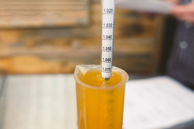 Measuring specific gravity of beer