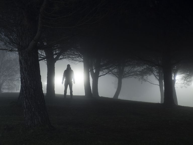 Silhouette of a man standing in park at night