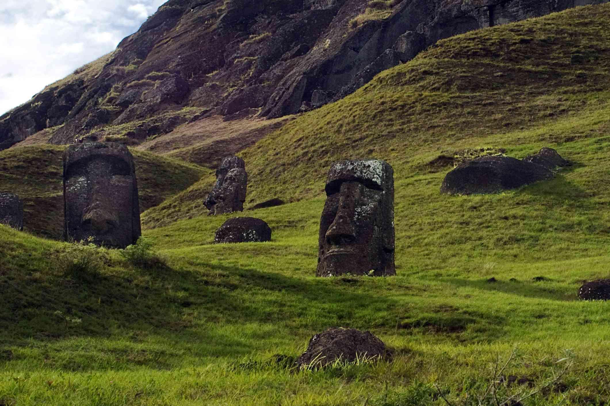 The overgrown quarry at Raro Rakaru, Easter Island, features many submerged moai