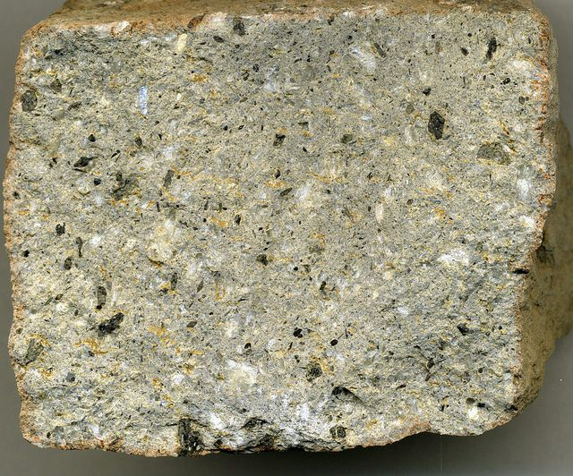 PROJames St. John Follow Porphyritic andesite (Sugarloaf Intrusion, Kate Peak Formation, Middle Miocene; Sugarloaf Hill, Six Mile Canyon, east of Virginia City, western Nevada, USA)