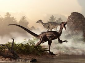 A pair of velociraptors patrol the shore of an ancient lake looking for their next meal.