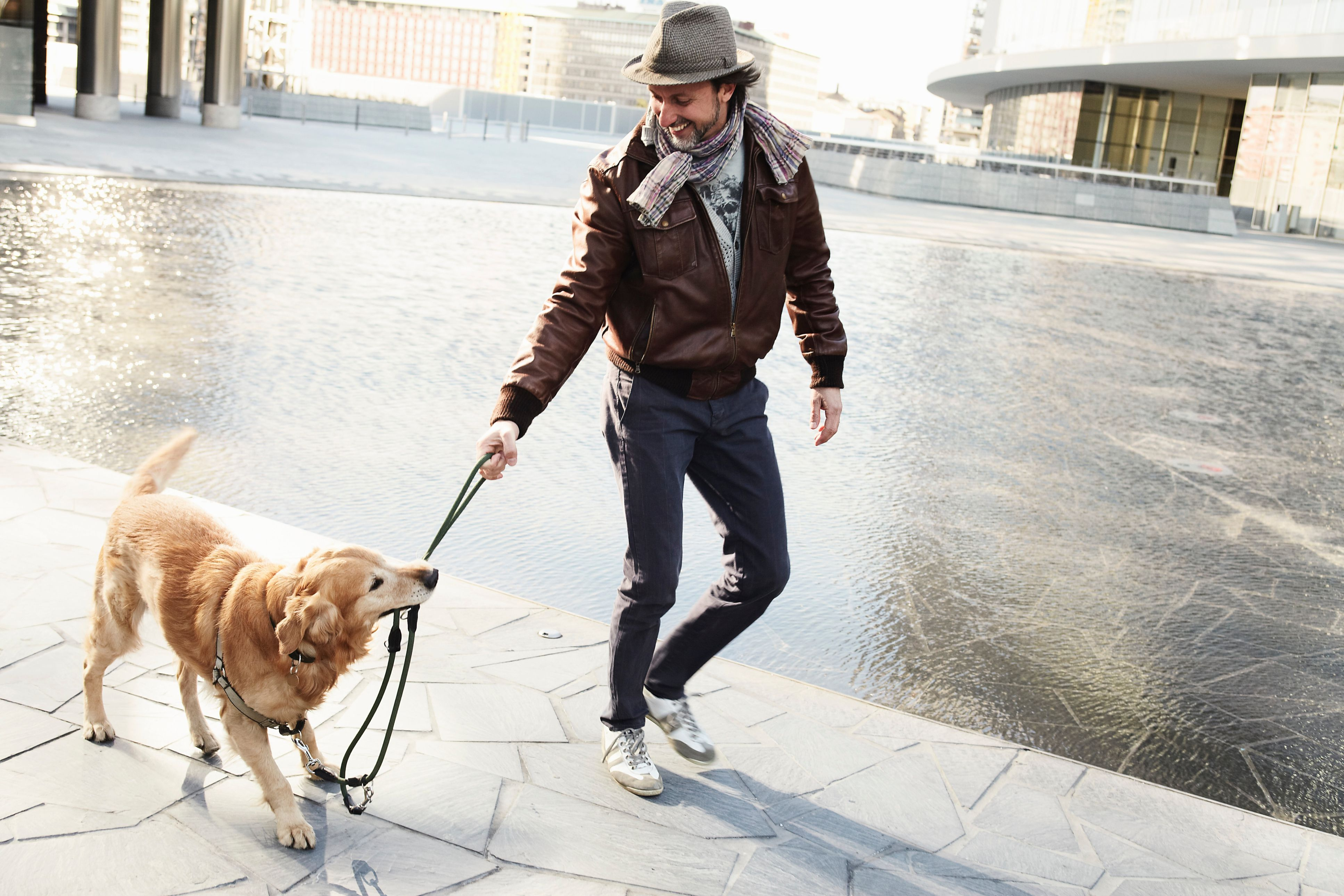 Mid adult man and dog pulling on leash in city