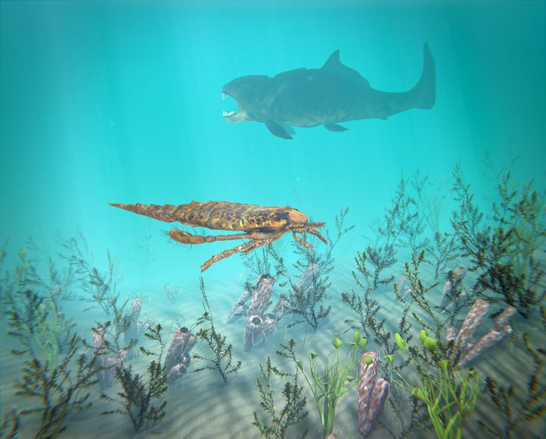 Eurypterus And Dunkleosteus In The Devonian Sea