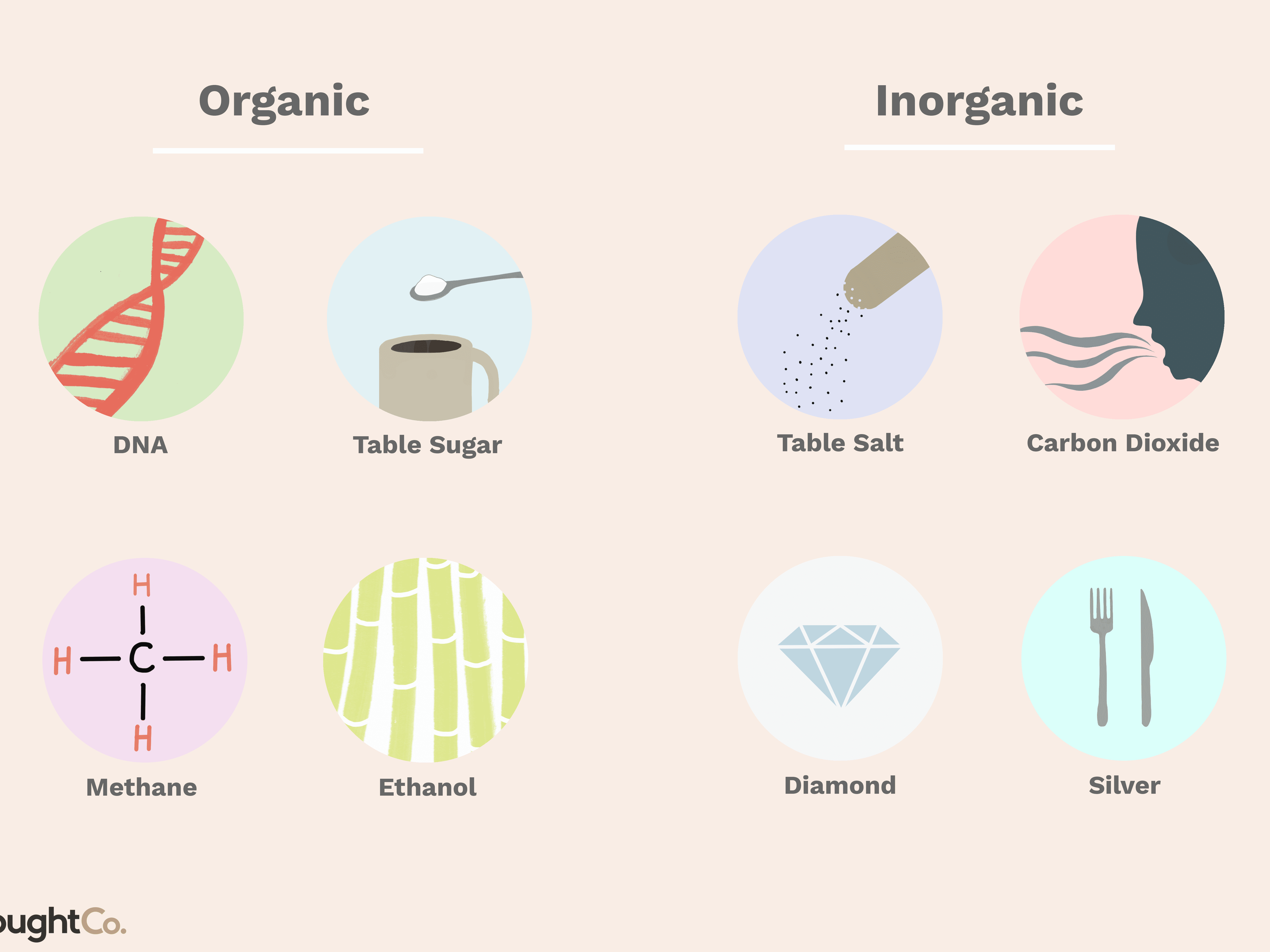 Understand the Difference Between Organic and Inorganic