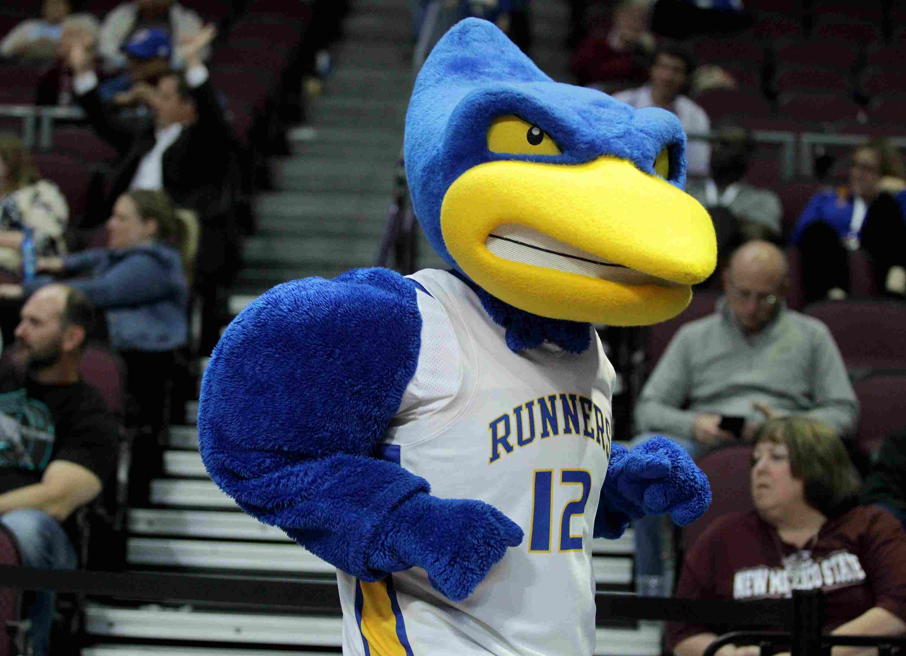 The Cal State Bakersfield Mascot, Rowdy the Roadrunner